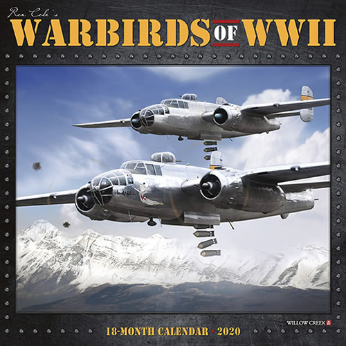 Warbirds of WWII 2020 18-month Calendar  9781549208126