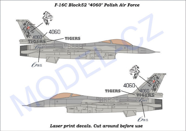F16C Fighting Falcon (4060 Polish Air Force Tigermeet)  MCZA7205