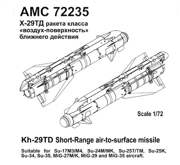 Kh-29TD Short range Air to Surface Missile with AKU58-1 Pylon (2)  AMC72235