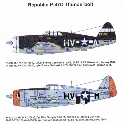 Republic P47D Thunderbolt  48048
