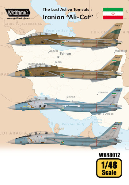 The Last Active Tomcats - Iranian