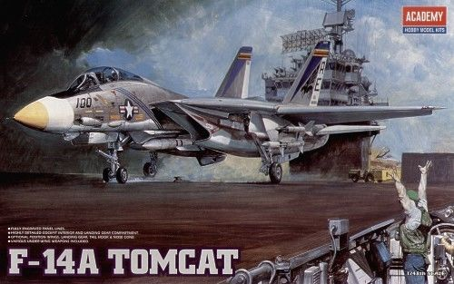F14A Tomcat (old boxing found behind shelving)  1669