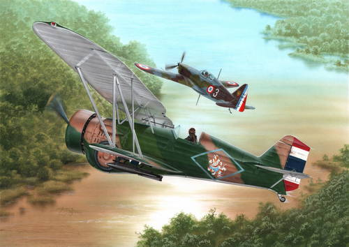 Curtiss Model 68 Hawk III 'Over Siam and Argentina
