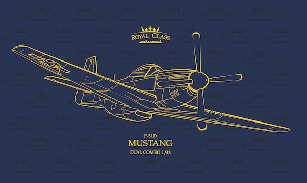 North-American P-51D-5 Mustang Dual Combo  R0020