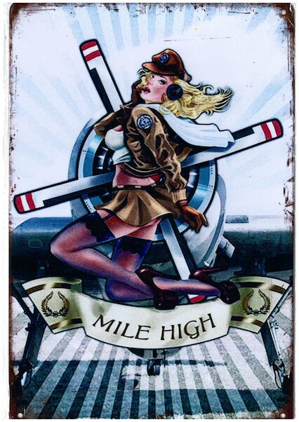 Mile High metal poster metal sign - pin up  YD8603B