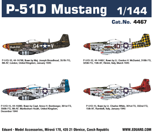 P51D Mustang (1 kit included)  4467