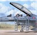 Ladders F16B/D Fighting Falcon